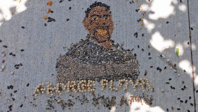 """The first """"Seeds for Justice"""" sidewalk art display made by Salina artist Priti Cox shows a portrait of George Floyd made of indigenous seeds near U.S. Rep. Roger Marshall's Salina office, 200 E. Iron Ave."""