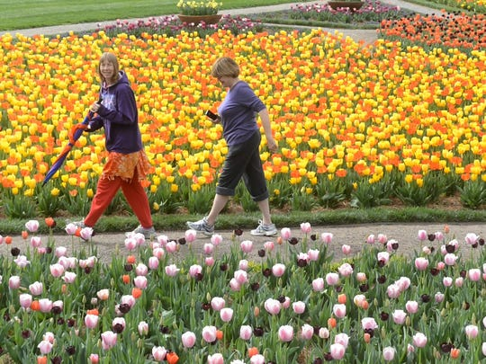 The tulips are a big draw at Biltmore Estate each spring.