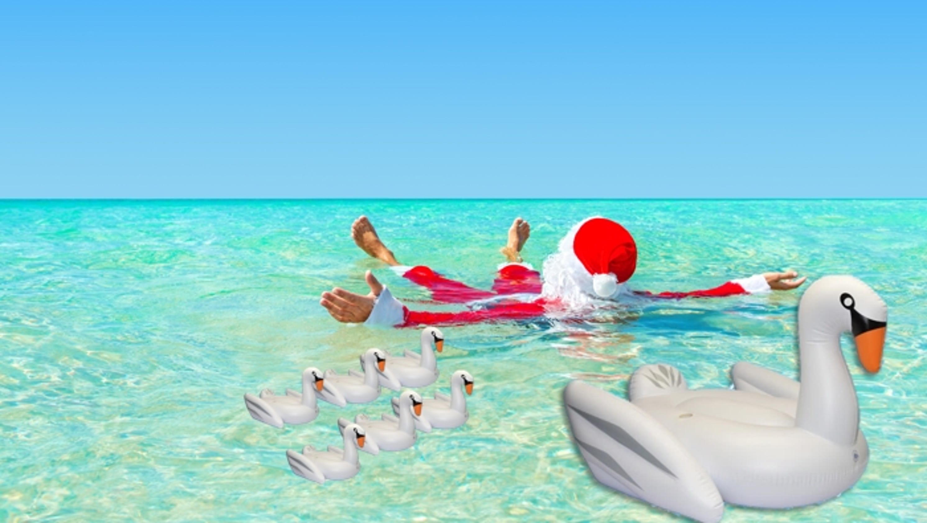 CHRISTMAS IN JULY: 7 Swans a Swimming