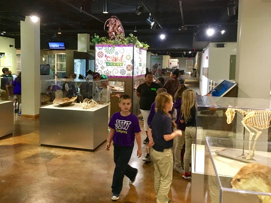 The Lafayette Science Museum sees student groups throughout