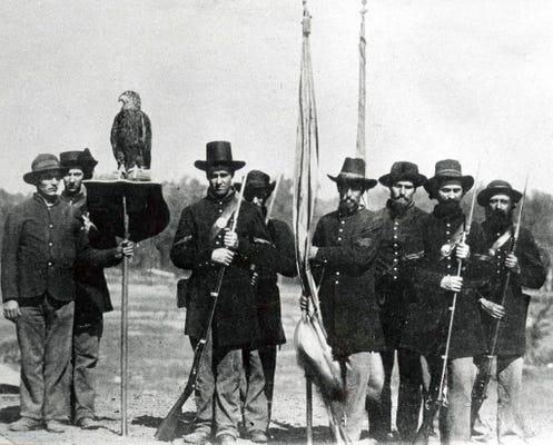 Old abe eagle who was civil war mascot was indeed male altavistaventures Gallery