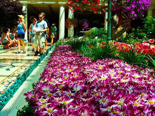 The Bellagio Conservatory in Las Vegas, Nevada. (Tomás Del Coro, Wikimedia Commons)