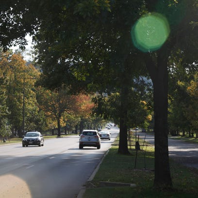 The afternoon sunlight glimmers throught the trees along Southern Parkway in the Beechmont neighborhood.