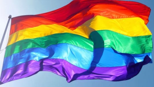 Northern Nevada Pride Festival is July 23.