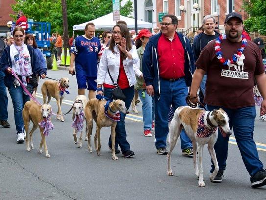 NJ Greyhound Adoption Program marched in theFlemington