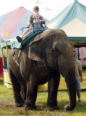 Elephants will be among the big attractions at the North Brunswick Youth Sports Festival.