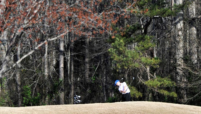 Area high school golfers took to the course during the Greenville County high school golf tournament Monday at Willow Creek Golf Club in Greer on April 2, 2013.