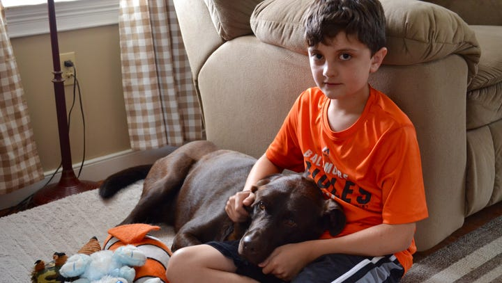 Boy's summer spent caring for grandma's dying dog