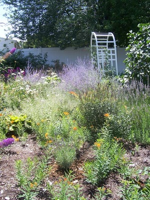 Spending some time in your garden can be a great way to relieve stress.
