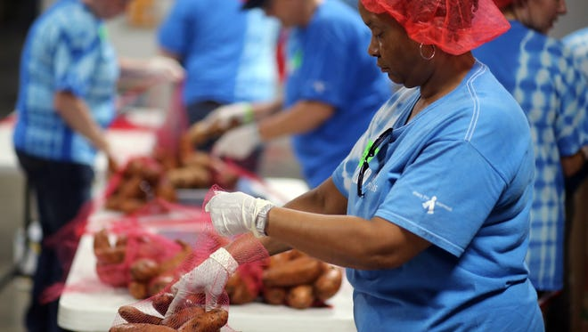 Piedmont Natural Gas employees Pam Thomas sort and pack sweet potatoes as