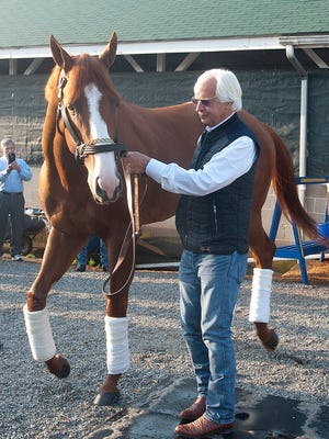 Bob Baffert, trainer shows off this year's Kentucky Derby winner, Justify out of the Churchill Downs barn area to greet the media and public the Sunday morning following the race.