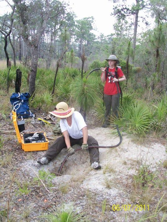 scoping a tortoise burrow.jpeg