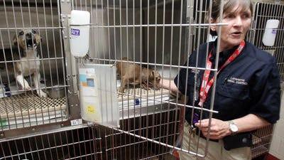 Supervisor Virginia Lee with Lafayette Animal Control, 613 W. Pont des Mouton Road.