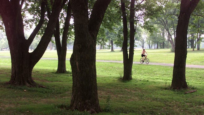 Cox Park scene.