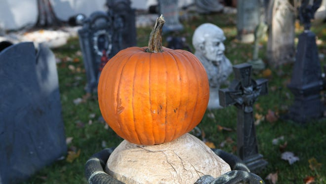 What's Halloween without a jack o'lantern? Pumpkins start at $6 per pound at Dr. Davie's Farm in Congers. What's Halloween without a jack o'lantern? Pumpkins start at $6 per pound at Dr. Davie's Farm in Congers.