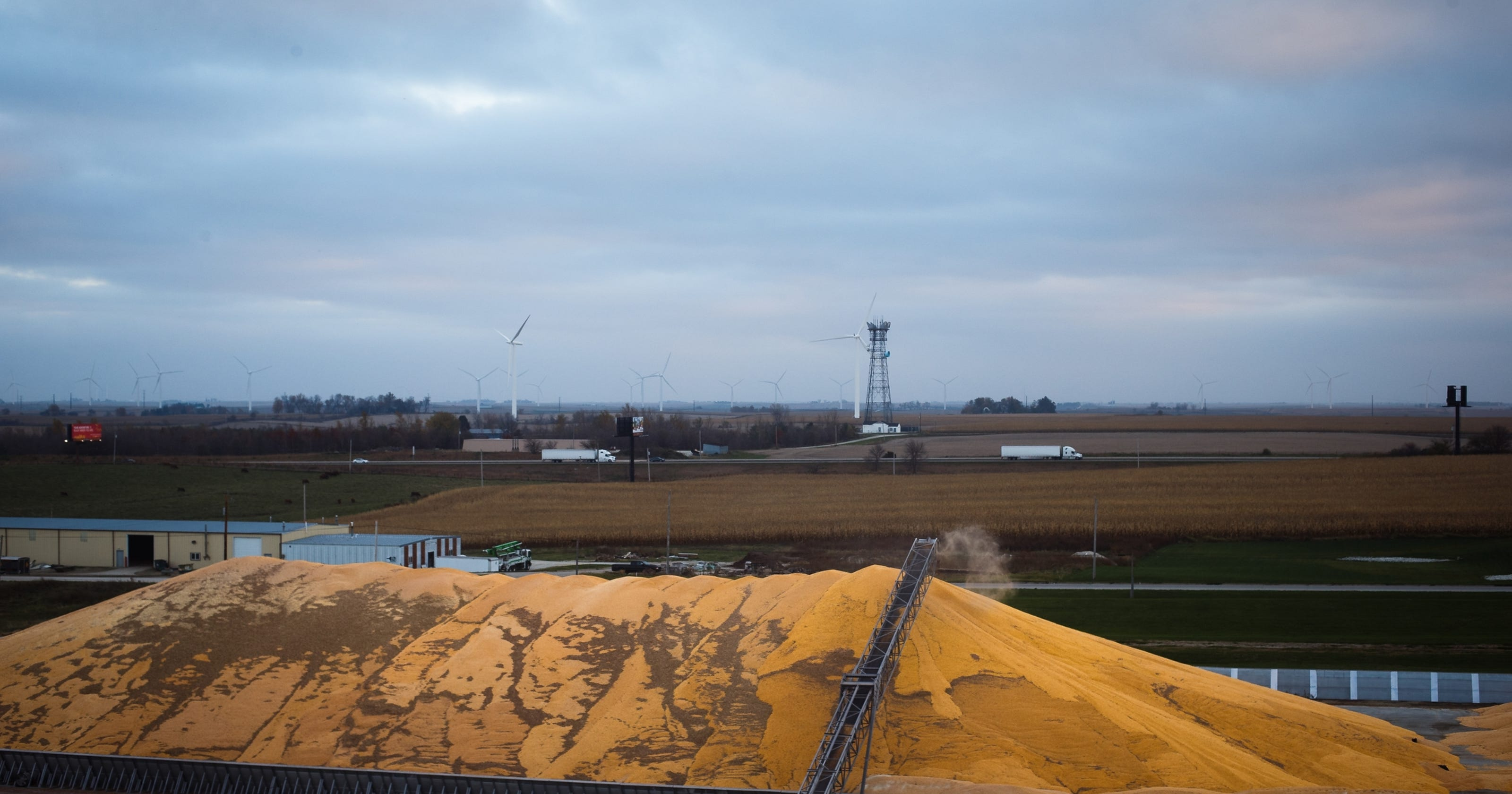 Record crops + low prices = mountains of grain