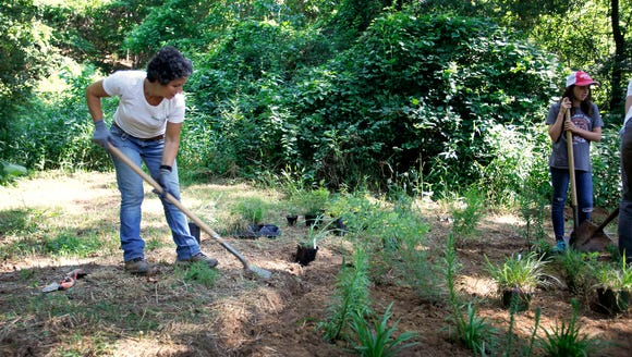 Volunteers work to create a pollinator garden with