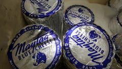 Maytag farms to restart famous blue cheese production
