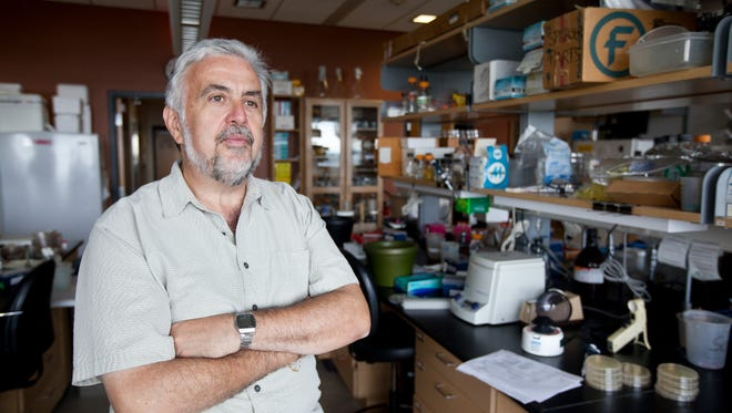 Tim Donohue, director of the Great Lakes Bioenergy Research Center at UW-Madison, says he is bullish about the center's ability to win another five years of funding despite uncertainty surrounding President-elect Donald Trump's plans.