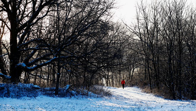 Brian Power, 54 of Waverly, walks through timber while hunting Whitetail Deer during a special season on Saturday, Feb. 25, 2017 in Elkader. The Iowa DNR made the season in an effort to get up to 300 samples of deer so that they could test for Chronic Wasting Disease which has come to Northeast Iowa.