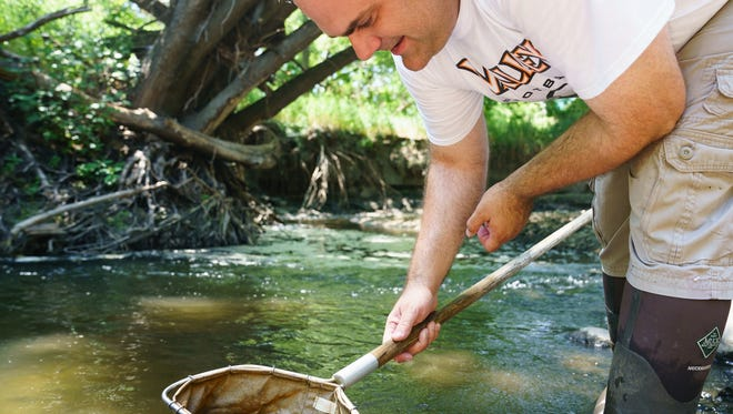 Valley High School chemistry and physics teacher Marc Pedersen collects insect samples to test water quality in Colby Woods on July 20 in Windsor Heights.