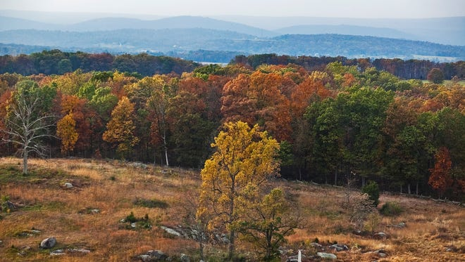 If you would like to capture some autumn beauty on your own property, now is an excellent time to plant trees for your future enjoyment. - Evening Sun file