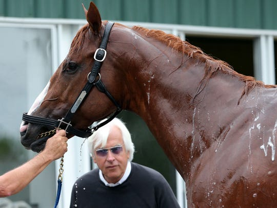 Trainer Bob Baffert watches as Triple Crown contender Justify is given a bath after his morning workout at Belmont Park on June 7.