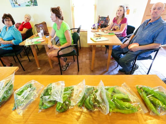 Various types of green chile are stored in plastic bags before a taste test on Thursday, September 22, 2016, as participants gather during one of four monthly chile workshops hosted by the Friends of the Mesilla Valley Bosque State Park.