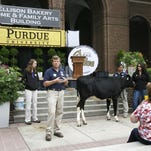 Dr. Jonathan Townsend lectures on Purdue University veterinary medicine at the 2012 Indiana State Fair