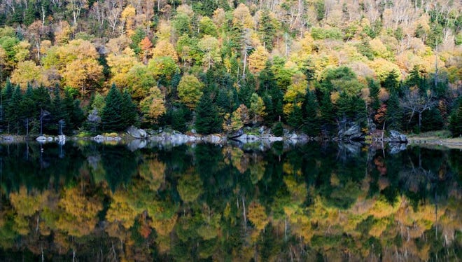 Vermont 17 and the Appalachian Gap were a leaf-peeper's paradise on Sunday, October 5, 2014.