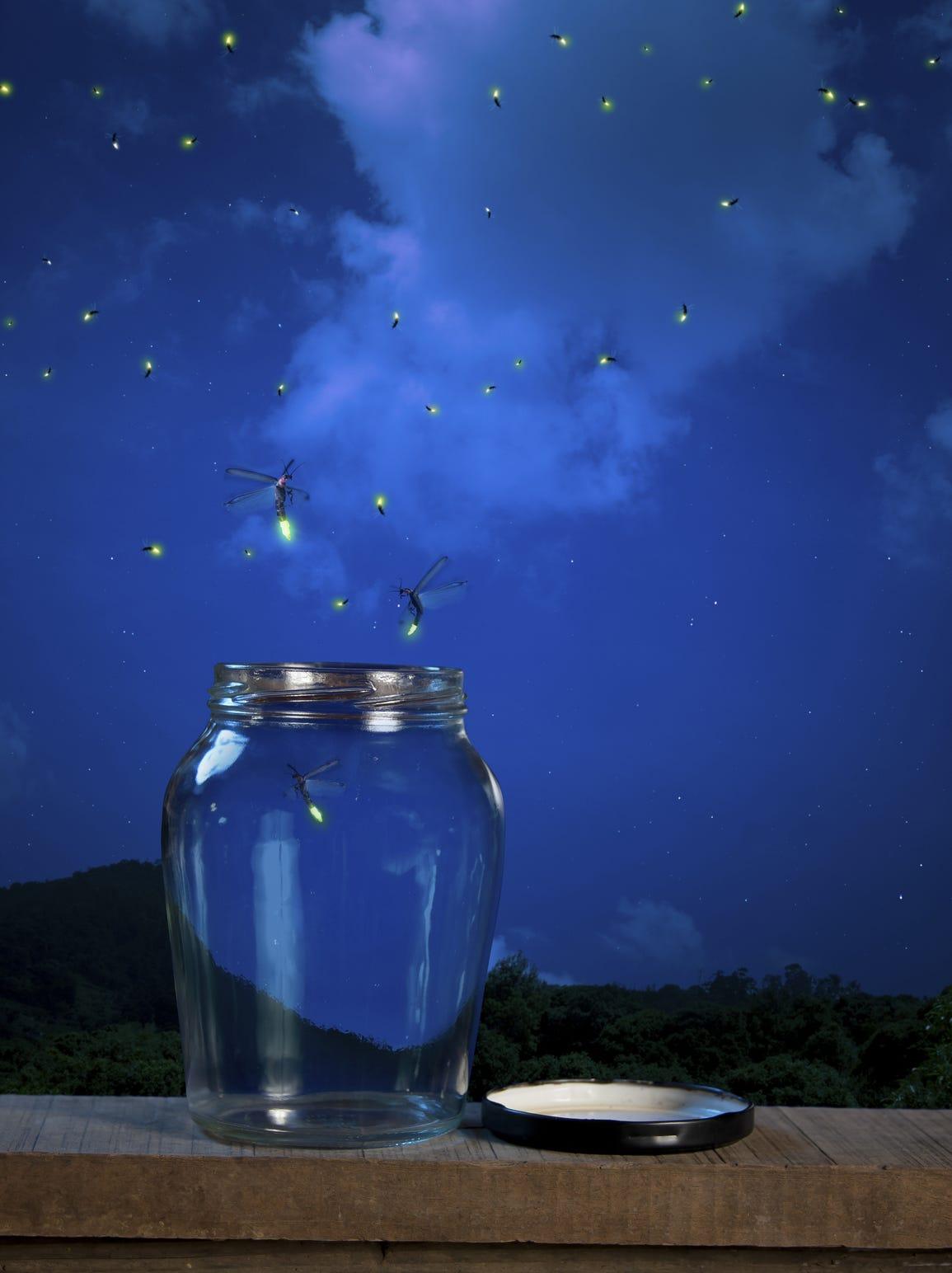 D.I.Y. Fireflies In a Jar – Just Natoya |Fireflies In A Jar Cover Photo