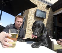 Michigan restaurants could legally allow patrons t...