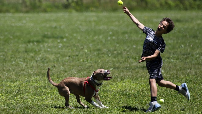 The next public input sessions on changes to the Outagamie County Dog Park and Plamann Park will be Aug. 20.