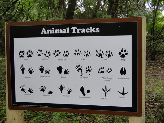 The Severson Learning Center offers educational opportunities year round. Ag educator Emily Klingbeil often takes her students out to look for tracks and other tell-tale animal signs in the snow.