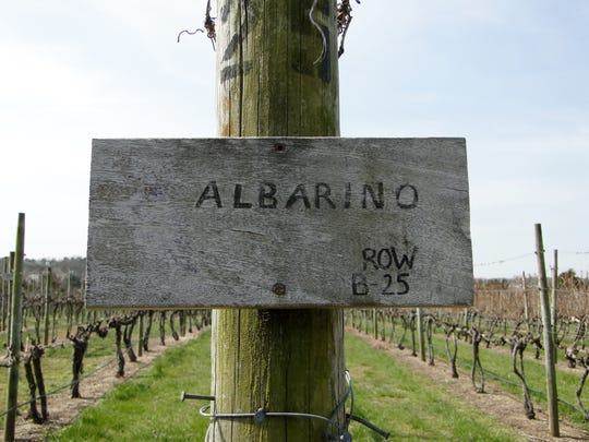 Albarino grapes grow at Natali Vineyards in Cape May