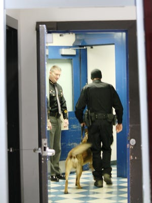 Deputies and dogs during a Jan. 5 drug sweep through the Hamilton County Justice Center.