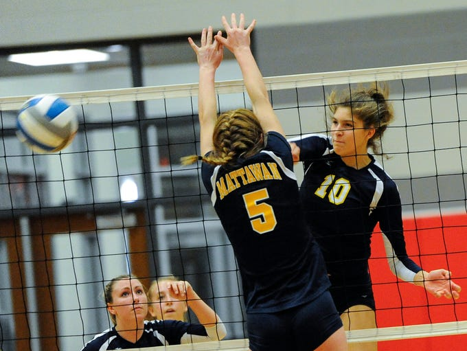 DeWitt junior Desiree Becker, (10) slams the ball past