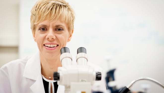 Catherine Hill, a professor of entomology and vector biology at Purdue, is the principal investigator on a team at Purdue looking for ways to control mosquitoes' ability to spread disease without killing the insects.