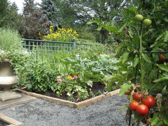veg garden2