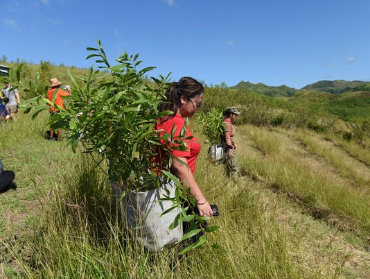 636441361667728243-Planting-05.jpg