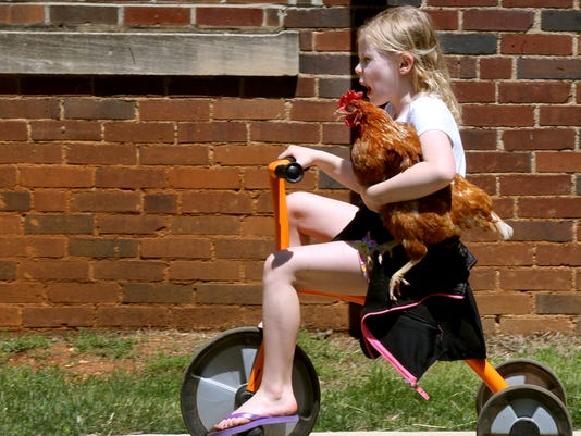 636289060001663755-1-kids-and-Chickens.JPG