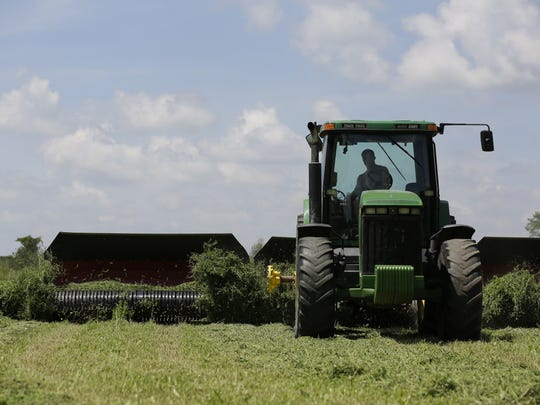 Justin Sternweis merges hay in a field for D&B Sternweis Farms in Marshfield on Thursday, June 28, 2018. The farm will co-host the 2018 Wisconsin Farm Technology Days July 10-12 along with Heiman Holsteins.