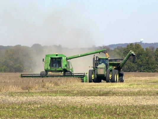 CG Farmer in field