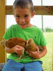 Tucker Lamkin with his two chicks.