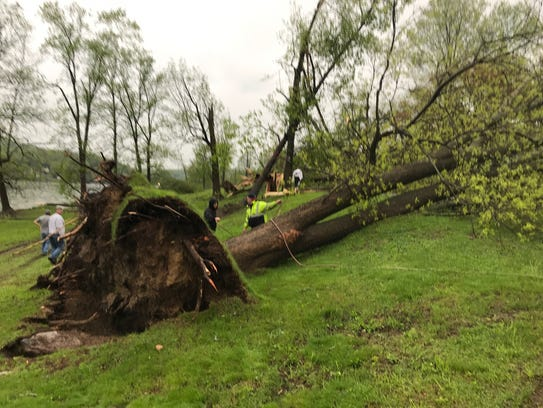 Lots of trees are down along Lakeshore Drive in Lake
