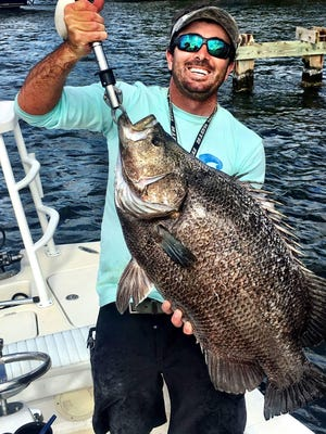 A terrific tripletail was caught last year by Capt. Jonathan Earhart of Chaos Fishing Charters in Jensen Beach.