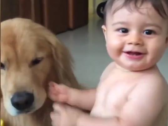 dog-kissing-baby.PNG