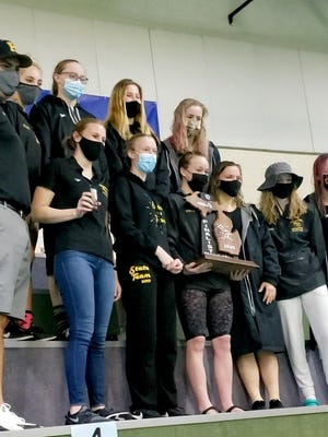 The Hamilton girls swim team earned its best finish in team history with a state-runner-up finish in Division 3 on Saturday at Lake Orion.