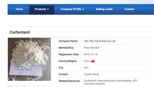 "This Sept. 13, 2016 image shows a portion of a webpage offering the powerful opioid carfentanil for sale by the Jilin Tely Import and Export Co. ""We can supply carfentanil … for sure,"" a saleswoman from the company wrote in a September 2016 email. ""And it's one of our hot sales product."" But when later contacted by the AP, the company said it had never shipped carfentanil to North America and had offered to sell it just ""to attract the customer."" As of Oct. 7, 2016, this webpage was no longer available. (AP Photo)"