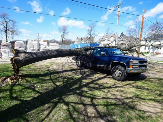 A tree comes to a rest on a truck in Port Huron Friday.